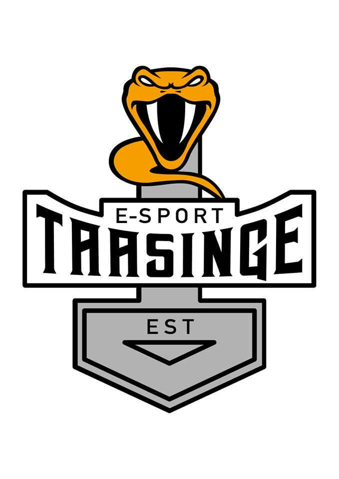 E-Sport Taasinge